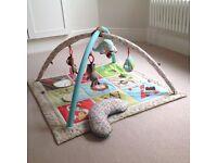 Skip Hop Alphabet Zoo Activity Gym & Playmat