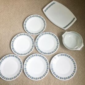 Vintage and retro Checkers Pyrex collection