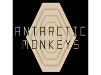Bass Player Needed for UK's Number 1 Arctic Monkeys Tribute Band