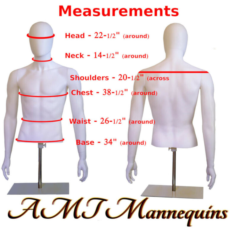 YMT-1BT Male Mannequin Torso+Metal stand,Half Body, Adjust Hgt, white dress form