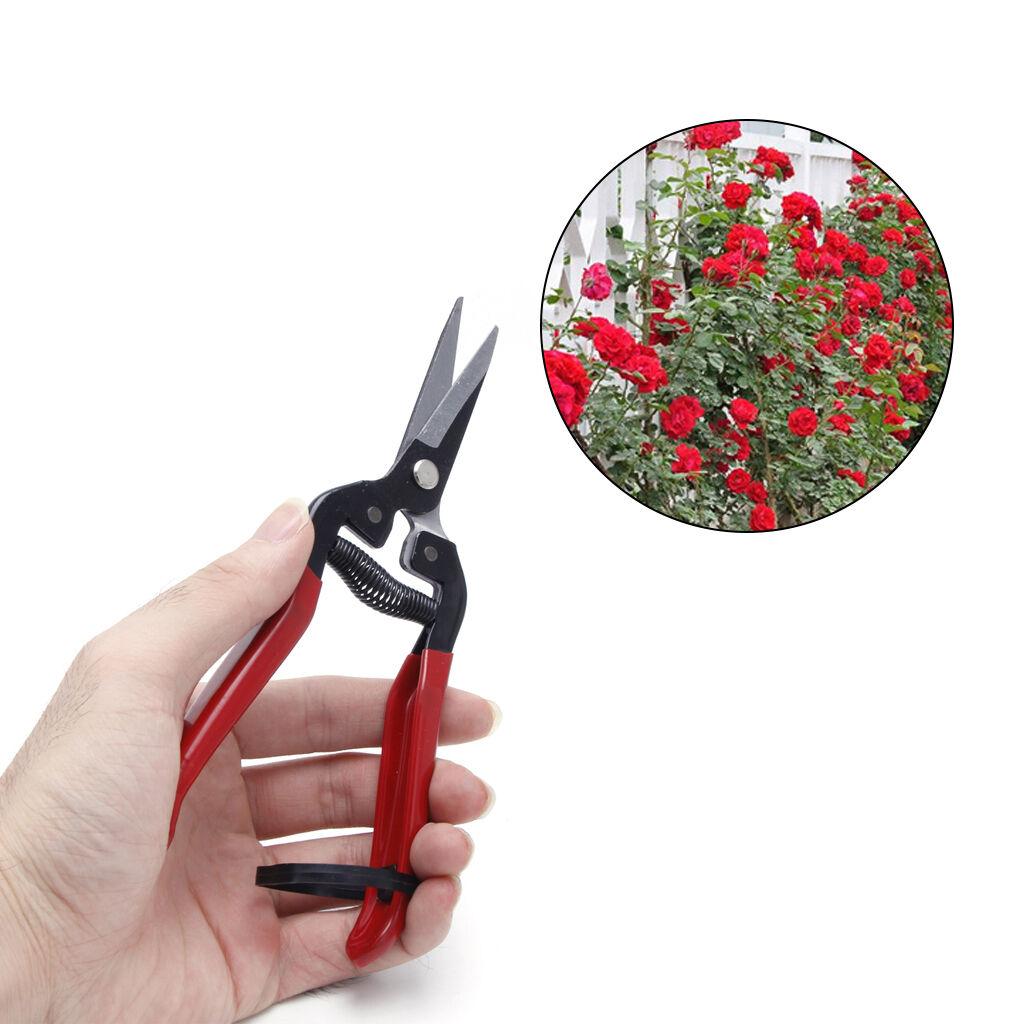 secateurs u0026 pruners garden hand tools u0026 equipment garden u0026 patio