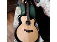 Hand made Moondog spirit guitar