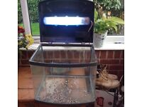 HAILEA 60 litre fish tank with light