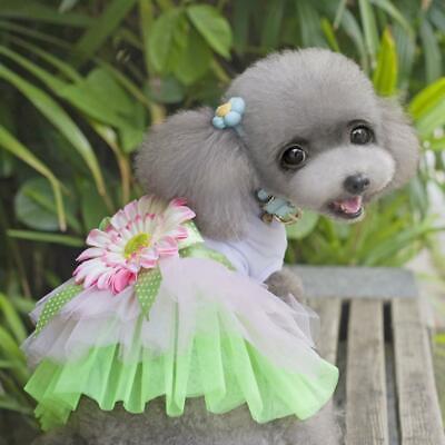 Pet Dog Tutu Dress Sunflower Daisy Lace Skirt Princess Clothes Apparel Size (Daisy Hunde Kostüm)