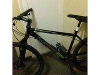 Pro c board man mountain bike