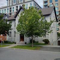 Garden Oasis! Fully Renovated Sandy Hill 1 Bed