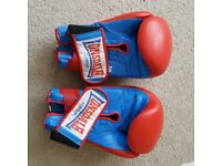 Lonsdale Boxing Gloves (Size 10)