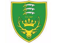 Football Trials - Intermediate Club in Waltham Abbey