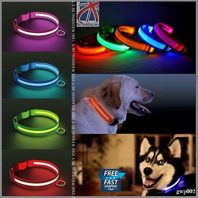 LED Dog Pet Collar Flashing Luminous Adjustable Safety Light Up Nylon Tag gwp002