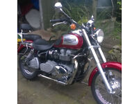 TRIUMPH BONNEVILLE IMMACULATE SHOWROOM CONDITION