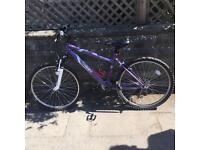 ***SOLD*** Used bike for sale ('Apollo Twilight' mountain bike)