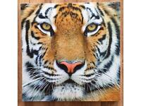 Tiger canvas artwork 28cm x 28cm