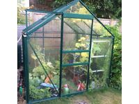 Green Aluminium Greenhouse 6 foot X 6 foot with automatic openers and staging
