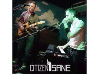 Alt-Rock Band Citizen Sane seeks a groovy rhythm section!