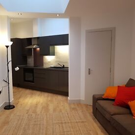 1 bedroom flat close to city centre