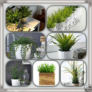 Ikea artificiel fejka plante en pot corkscrew rush herbe maison bambou pl - Ikea plante artificiel ...