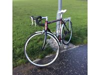 REVOLUTION AUDAX mint condition with added back rack and up graded wheels.
