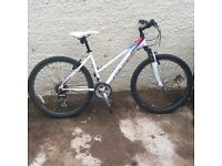 Rayleigh SR Suntour Mountain Bike