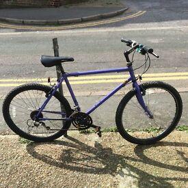 Lightweight Steel-Frame Raleigh Mountain Bike