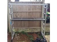 Lyte Platform Ladder