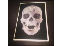 Damien Hirst- The making of the diamond skull book