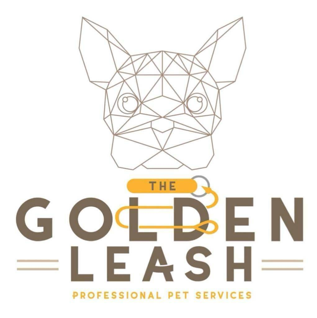 Dog Services With Certified Trainers In Hulme Manchester Gumtree