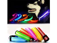 Fabric LED Dog Collar - Brand New
