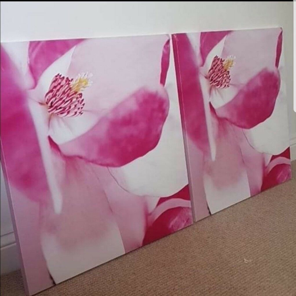 X2 pink flower canvas prints in burbage leicestershire gumtree x2 pink flower canvas prints mightylinksfo
