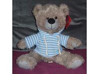 Teddy Bear With Hoodie