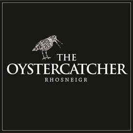 Cleaner, Oyster Catcher, Rhosneigr