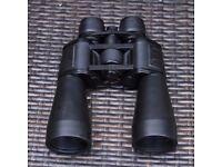 Large Pair of Binoculars