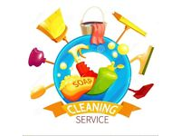 Professional, experienced, and fully insured individual cleaner