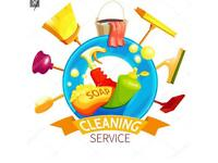 Ewell, Epsom, Banstead and surrounding area cleaning lady.