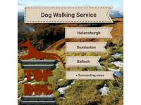 Top Dog - Dog Walking Service - Dumbarton Helensburgh Balloch