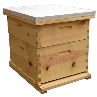Beehive with Pierco Frames - Assembled (Beekeeping)