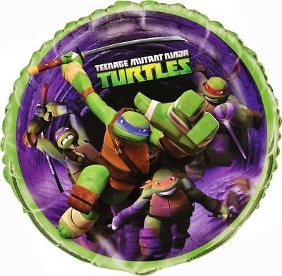 TMNT Teenage Mutant Ninja Turtle 18