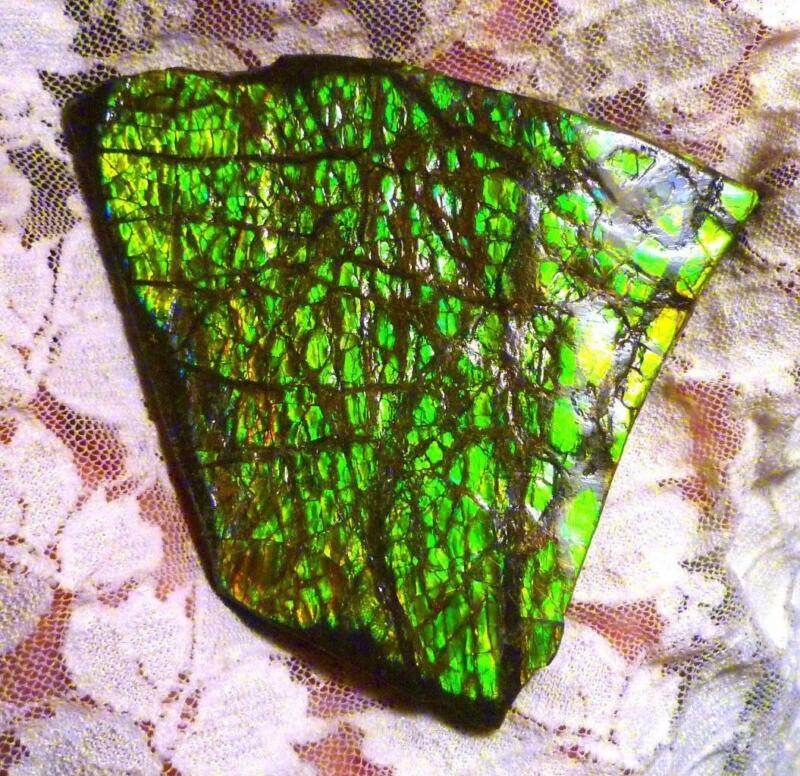 412.8 carats Green AMMOLITE Gemstone Rough Canada 88x78mm