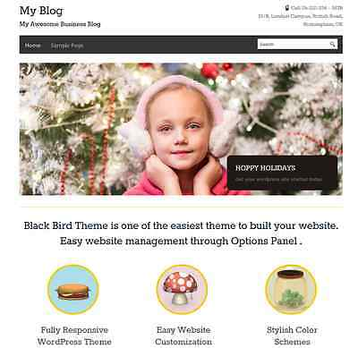 Wordpress Business Website With 3 Months Free Hosting 10 Plugins