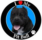 Pit Bull Terrier Collectibles