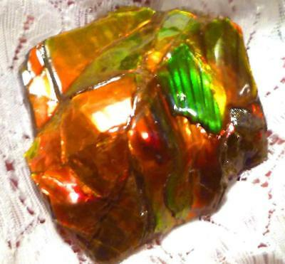 312cts CANDY APPLE RED AMMOLITE Ammonite Shiney Colors 54 x 48mm