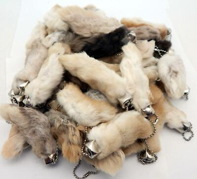Used, 100 Natural Color Lucky RABBITS FOOT Keychains New (Oryctolagus Cuniculus) for sale  Fort Worth