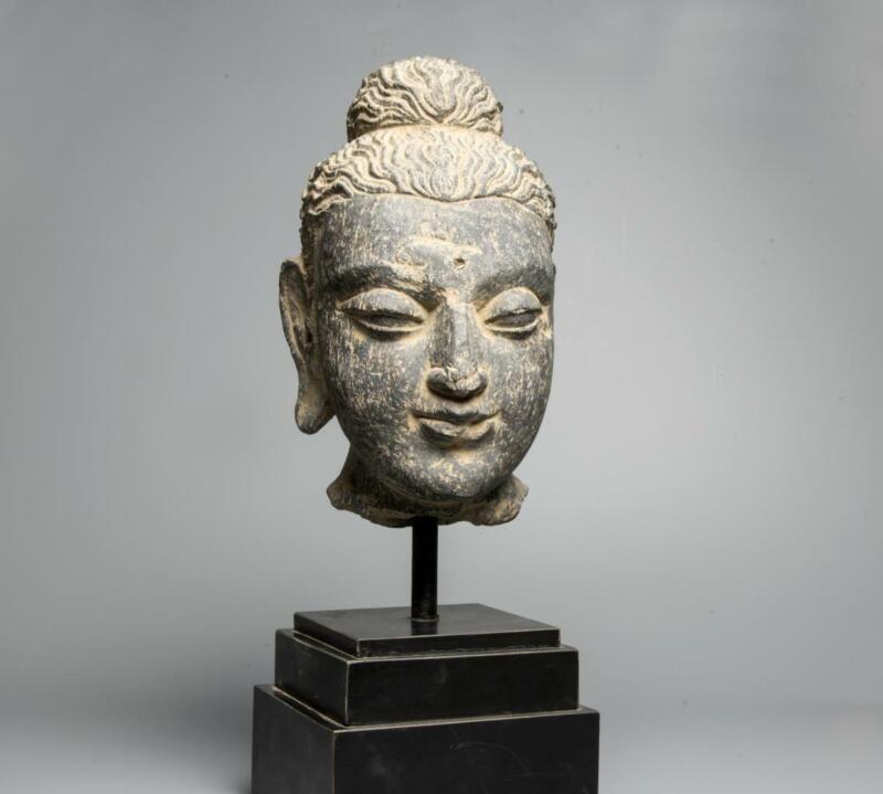 Gandharan carved stone head of Buddha: 3rd century AD.