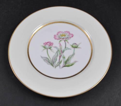 """Vintage Mikado China Harmony Dinner Plate Occupied Japan 10 5/8"""" c1952 G12"""