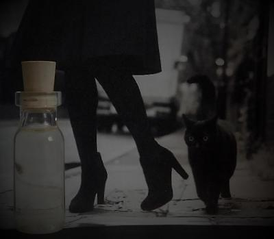 CAT NOIR Potion Ritual Oil Anointing Oil Fragrance Love ~ Wicca Witchcraft Pagan
