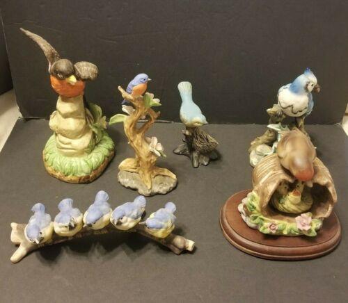 collectible 6 piece porcelein bird set