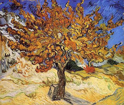 "The Mulberry Tree by Vincent Van Gogh, 12""x14"", Giclee Canvas Print"
