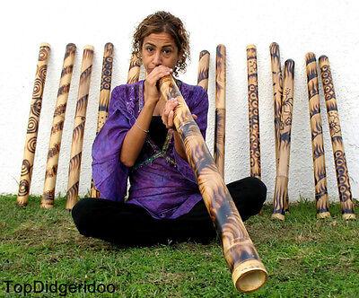 """SHIPS FREE 47""""120cm DIDGERIDOO BURNS HAND ARTWORK, didje,dijeridu,didgeridu,dig"""