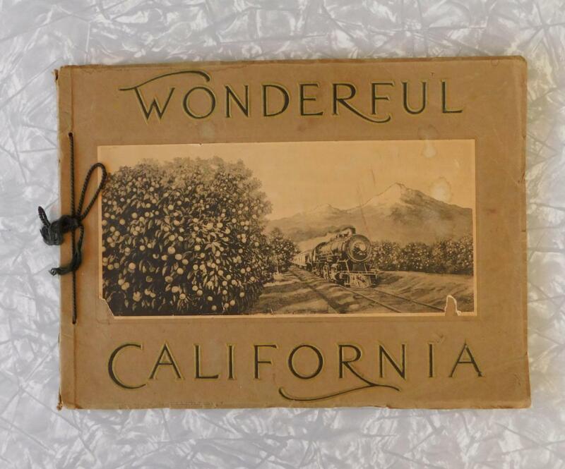 WONDERFUL CALIFORNIA Van Noy Antique Sepia Tone Photos Photogravures 1915 book