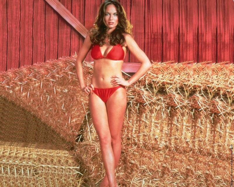 Catherine Bach Farm  8x10 Photo Print