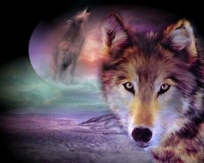 US SELLER- wild animals spirit wolf art poster discount wall decals